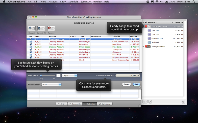 CheckBook Pro: Easier Than Quicken & Works on Mac OS X Lion